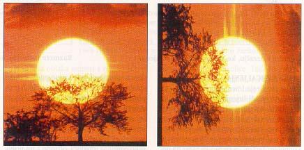 Spločenost Sonca